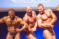 Male bodybuilders flex their muscles and show their best physiqu Royalty Free Stock Photography
