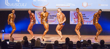 Male bodybuilders flex their muscles and show their best physique. MAASTRICHT, THE NETHERLANDS - OCTOBER 25, 2015: Male bodybuilders Ali Rezah from Iran with Royalty Free Stock Images