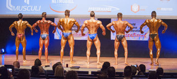 Male bodybuilders flex their muscles and show their physique Royalty Free Stock Photos