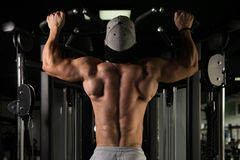Male Bodybuilding Athlete Doing Pull Ups. Young Man Athlete Doing Pull Ups - Chin-Ups In The Gym Royalty Free Stock Images