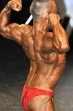 Male bodybuilding contestant showing his back double biceps pose Royalty Free Stock Images