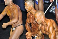 Male bodybuilding contestant showing his best. ROOSENDAAL, THE NETHERLANDS - OCTOBER 19, 2014. Male bodybuilders showing their best at the bodybuilding and Royalty Free Stock Photo