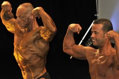 Male bodybuilding contestant showing his best. ROOSENDAAL, THE NETHERLANDS - OCTOBER 19, 2014. Male bodybuilders showing their best at the bodybuilding and Stock Photography
