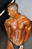 Male bodybuilding contestant showing his triceps Royalty Free Stock Images