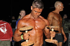 Male bodybuilding doing dumbbell bicep curls Royalty Free Stock Photography