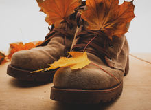 Male boots and yellow foliage. Autumn boots and yellow foliage Royalty Free Stock Photos