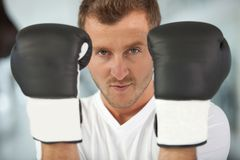 Male boxer Royalty Free Stock Image