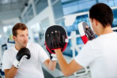 Male boxer Royalty Free Stock Photography