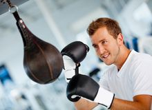 Male boxer Royalty Free Stock Photos