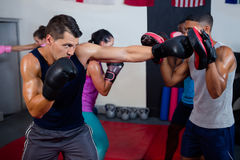 Free Male Boxer And Instructor Practicing With Boxing Royalty Free Stock Photos - 95866188
