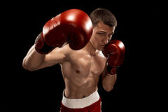 Male boxer boxing with dramatic edgy lighting in a dark studio Royalty Free Stock Images