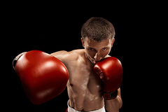 Male boxer boxing with dramatic edgy lighting in a dark studio. Male Athlete boxer boxing with dramatic edgy lighting in a dark studio royalty free stock photo