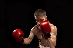 Male boxer boxing with dramatic edgy lighting in a dark studio Stock Images