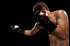 Male boxer boxing in punching bag with dramatic edgy lighting in a dark studio Royalty Free Stock Photo