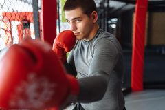 Male boxer engaged in training in the gym, in a cage for a fight. Without rules stock photography