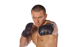 Male boxer, a fighter. Sports. Royalty Free Stock Image