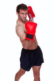 Male boxer isolated. Male boxer delivering a knockout punch isolated on white background Royalty Free Stock Photography