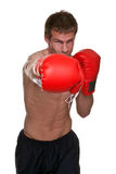 Male boxer knockout punch. Male boxer delivering a knockout punch, isolated on white background royalty free stock photography