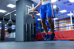 Male boxer legs Royalty Free Stock Photography