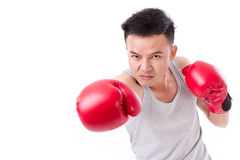 Male boxer, man fighter Royalty Free Stock Photos