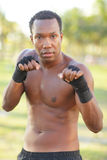 Male boxer in the park Royalty Free Stock Photos