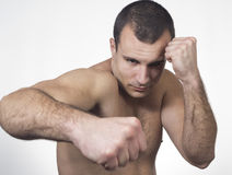 Male boxer punching Stock Photography