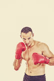 Male boxer ready to fight with boxing gloves Royalty Free Stock Photos