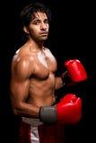 Male Boxer Royalty Free Stock Photos