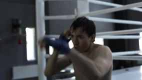 Male boxer training punching bag in boxing gym stock video footage