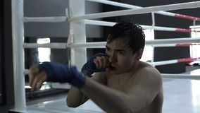 Male boxer training punching bag in boxing gym stock footage