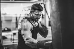 Male boxer training with punching bag in dark sports hall. royalty free stock photos