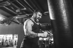 Male boxer training with punching bag in dark sports hall. Bearded Male boxer training with punching bag in dark sports hall. Young tattoed boxer training on royalty free stock photos