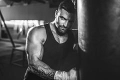 Male boxer training with punching bag in dark sports hall. Bearded Male boxer training with punching bag in dark sports hall. Young tattoed boxer training on Stock Images