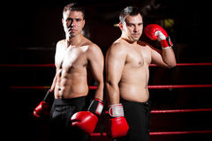 Male boxers ready to fight Stock Images
