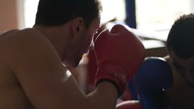 Male boxers sparring in ring, training before competition, practicing techniques. Stock footage stock footage
