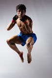 Male boxing fighter Stock Image