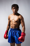 Male boxing fighter Royalty Free Stock Photo
