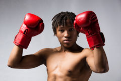 Male boxing fighter Stock Photography