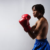 Male boxing fighter Stock Photos