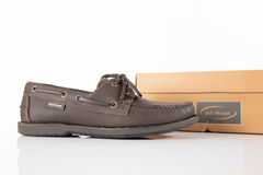 Male Brown Shoes Royalty Free Stock Image