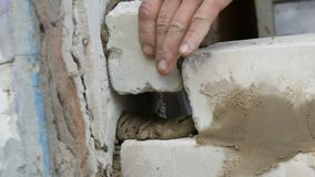 Male builder laying white brick on cement and standing wall. Hands of man laying building bricks close up view. Male builder laying white brick on cement and stock video