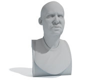Male bust Royalty Free Stock Image