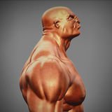 Male bust side view. 3d illustration Royalty Free Stock Images