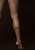 Male calf muscle Royalty Free Stock Photos