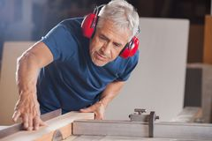 Male Carpenter Cutting Wood With Tablesaw Stock Image