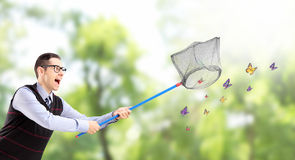 Male catching butterflies with net in a park Stock Photos
