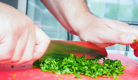 Male chef cutting parsley Royalty Free Stock Images