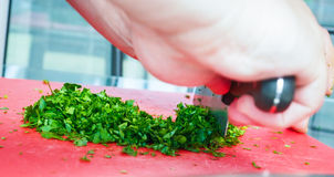 Male chef cutting parsley Royalty Free Stock Image