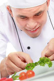 Male chef decorating Royalty Free Stock Photography