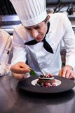 Male chef garnishing a dessert with a mint leaf on counter. Male chef garnishing dessert with a mint leaf in commercial kitchen Royalty Free Stock Photo
